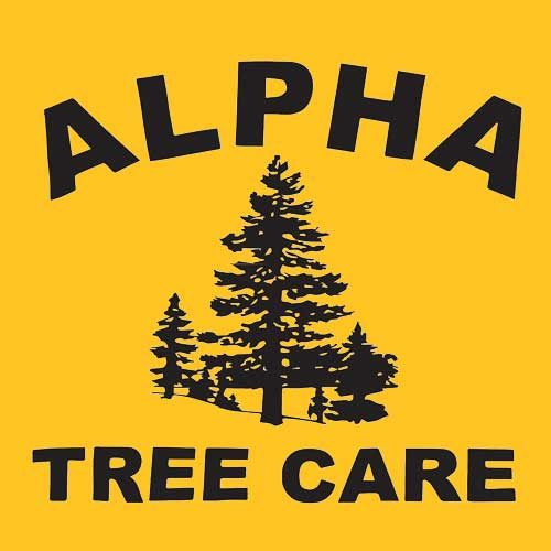 Alpha Tree Care – Tree Services and Tree Removal