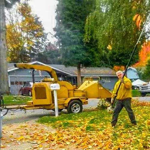 Chipping Service in Vancouver WA and Camas WA